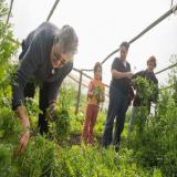 Más allá de un proyecto productivo. Mujeres rurales a la vanguardia: de la producción orgánica a la revalorización personal y de género